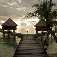 Sun and Tan- in spectacular Maldives!