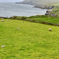 Wild, Wild Atlantic Way                    Part-1